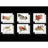 Cartes postales Dans la paume d'une feuille d'érable
