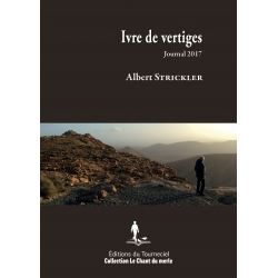 Ivre de vertiges : journal 2017