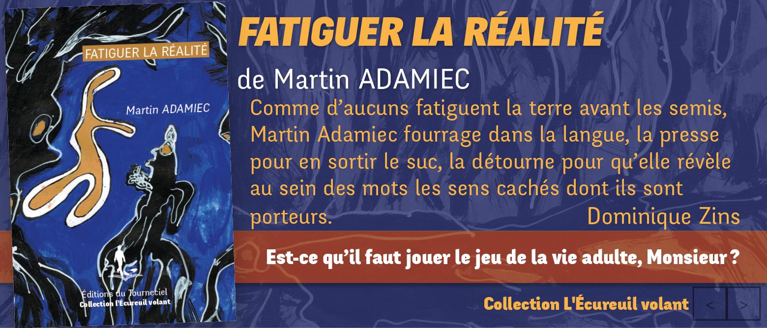 Livre fatiguer la réalité de Martin Adamiec, collection l'Ecureuil volant, edition du Tourneciel