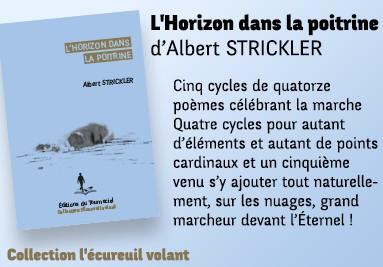 L'Horizon dans la poitrine d'Albert STRICKLER